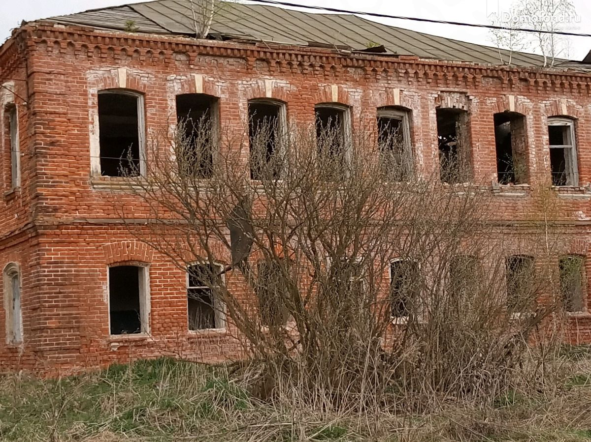 жуки поселок саратовской области фото и название